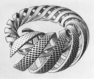 Maruits Escher - Illusion 1
